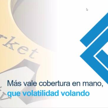 """Conversatorio virtual: """"Más vale cobertura en mano, que volatilidad volando"""""""